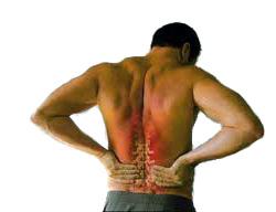 Condizione di una spina dorsale di reparto cervicale di una spina dorsale